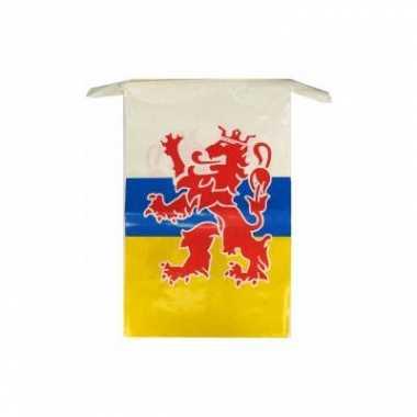 Feest 2x plastic vlaggetjes vlaggenlijnen limburg thema 10 meter