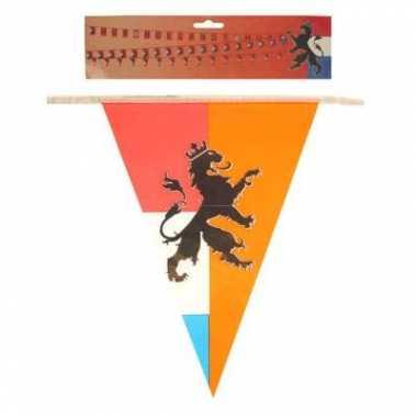 Feest 2x stuks retro vlaggenlijnen nederland holland van 10 meter