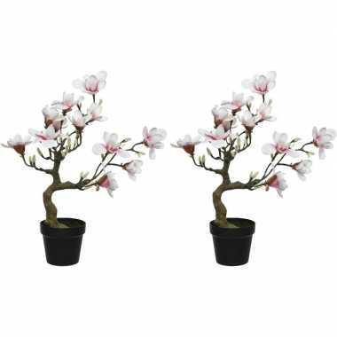 2x witte/roze magnolia/beverboom kunsttakken kunstplanten 60 cm