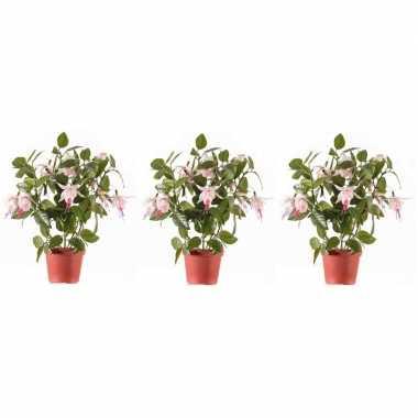 3x lichtroze fuchsiaplant kunstplant 30 cm voor binnen