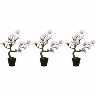 3x witte/roze magnolia/beverboom kunsttakken kunstplanten 60 cm