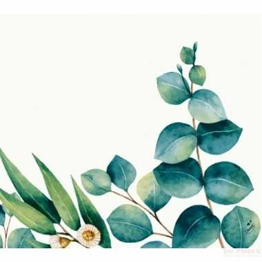 Feest 60x design servetten eucalyptus wit groen 33 x 33 cm