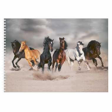 A4 paarden schetsboek/ tekenboek/ kleurboek/ schetsblok wit papier