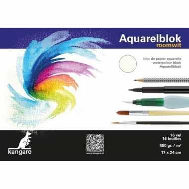 Aquarel papier 16 vel 300 gram 24 x 17 cm