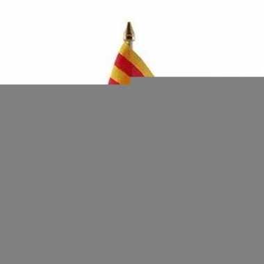 Feest catalonie vlaggetje met stokje