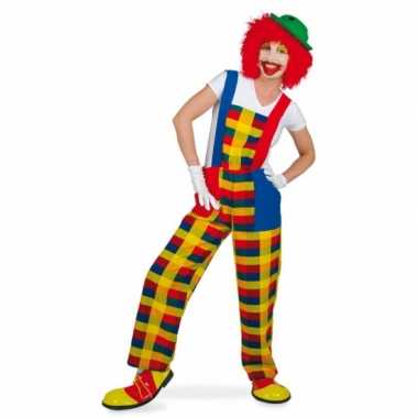 Feest clown pebbi verkleedkostuum voor volwassenen