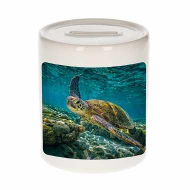 Dieren foto spaarpot zee schildpad 9 cm - schildpadden spaarpotten jongens en meisjes