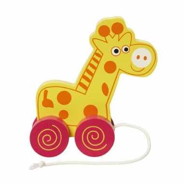 Feest girafje trekdiertjes