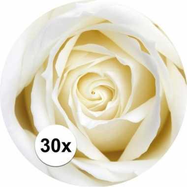 Feest glas viltjes met witte roos 30x