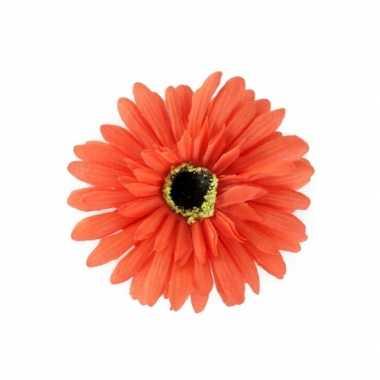 Feest haarbloem gerbera oranje