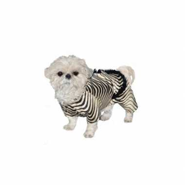 Feest honden zebra outfit