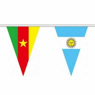 Feest internationale vlaggenlijn 11 meter