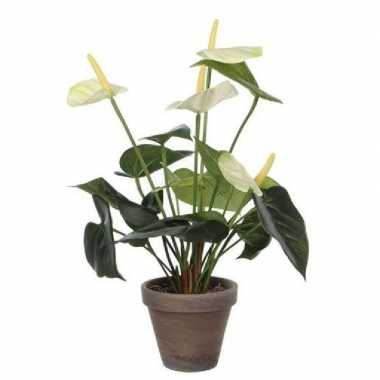 Kunstplant anthurium wit in grijze pot 27 cm