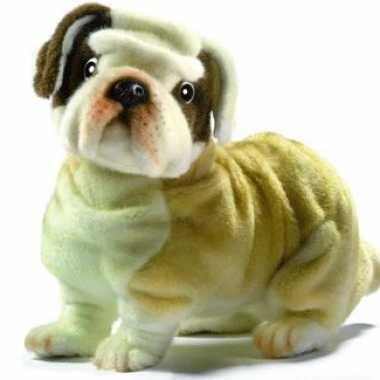 Feest levensechte hansa pluche bulldog knuffel 30 cm