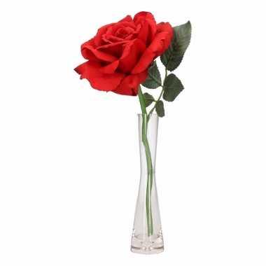 Feest luxe rode roos in vaasje 31 cm