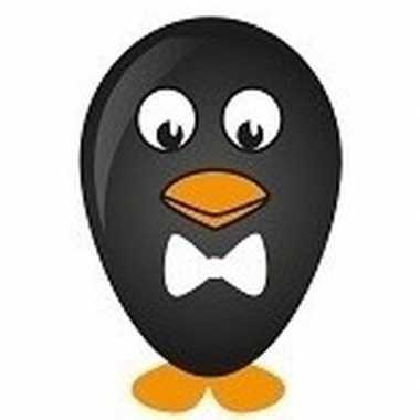 Pinguin ballon versieren 27 cm