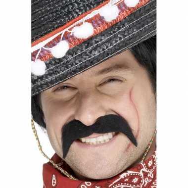 Feest plak snorren voor een mexicaan