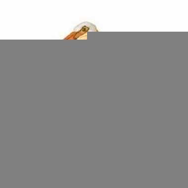 Plastic witte pelikaan 6 cm