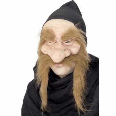 Feest sprookjes dwergen masker