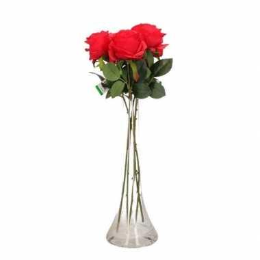 Rozen In Vaas.Valentijnscadeau 5 Rode Rozen In Vaas Feestwinkel Online Nl
