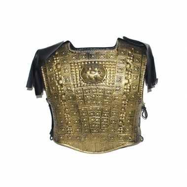 Feest verkleed schild goud met schouderpads