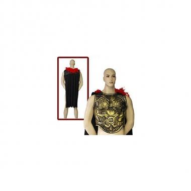 Feest verkleed schild met cape 10036478