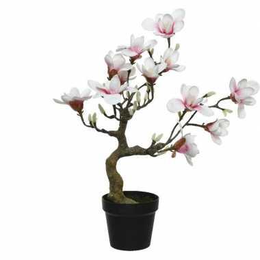 Witte/roze magnolia/beverboom kunsttak kunstplant 60 cm in pot
