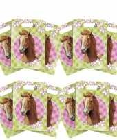12x paarden themafeest feestzakjes uitdeelzakjes
