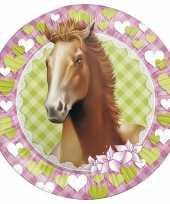 16x paarden themafeest wegwerpbordjes 23 cm