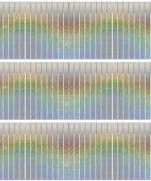 3x franjeslingers holografische feest slingers 6 meter