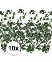 Feest 10x klimop slinger hedera helix 180 cm