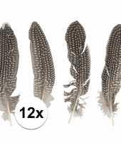 Feest 12x fazanten veren
