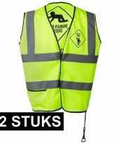 Feest 12x geel veiligheidsvestjes drunken people voor heren