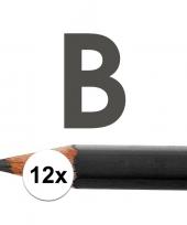 Feest 12x hb potloden voor volwassenen hardheid b