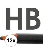 Feest 12x hb potloden voor volwassenen hardheid hb