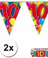 Feest 2 gekleurde vlaggenlijnen 10 jaar met sticker
