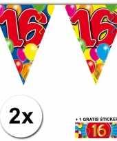 Feest 2 gekleurde vlaggenlijnen 16 jaar met sticker