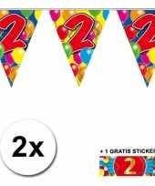 Feest 2 gekleurde vlaggenlijnen 2 jaar met sticker