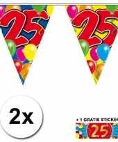 Feest 2 gekleurde vlaggenlijnen 25 jaar met sticker