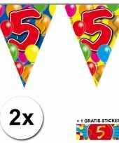 Feest 2 gekleurde vlaggenlijnen 5 jaar met sticker