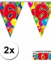 Feest 2 gekleurde vlaggenlijnen 6 jaar met sticker