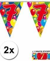 Feest 2 gekleurde vlaggenlijnen 7 jaar met sticker