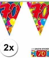 Feest 2 gekleurde vlaggenlijnen 70 jaar met sticker