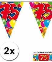 Feest 2 gekleurde vlaggenlijnen 75 jaar met sticker