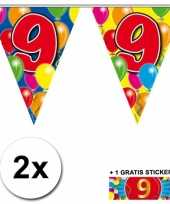 Feest 2 gekleurde vlaggenlijnen 9 jaar met sticker