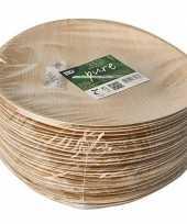 Feest 25x duurzame biologisch afbreekbare borden palmblad 25 cm