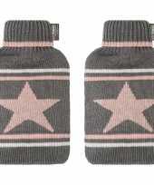 Feest 2x grijze roze witte kruiken met ster 2 liter