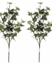 Feest 2x groen geelbonte hedera klimop kunsttak kunstplant 50 cm
