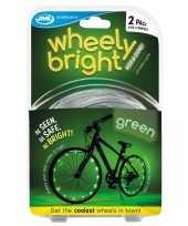 Feest 2x groene fietsverlichting spaakverlichting led lichtslangen