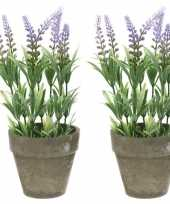 Feest 2x groene lilapaarse lavandula lavendel kunstplanten 25 cm in po